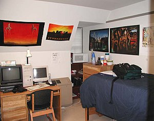 My sophomore dorm room