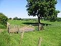 Sheep fields near Standardhill Farm - geograph.org.uk - 851294.jpg