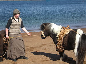 The Amazing Race 25 - The Detour in the Shetland Islands had some teams  working with Shetland ponies to transport peat.