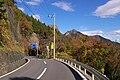 Shigasaka-Toge-pass-Mt-Futago.jpg