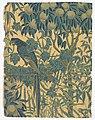 Sidewall, Macaw, 1908 (CH 18562395).jpg