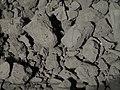 Simulant of Asteroid Ryugu Surface P3097593.jpg