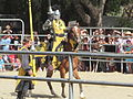 Sir Gregorio at Norcal Ren Faire 2010-09-19 16.JPG