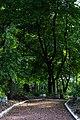 Smolensky Cemetery - panoramio (1).jpg