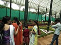 Snap from Lalbagh Flower Show Aug 2013 8352.JPG
