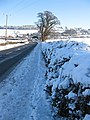 Snowy hedgerow by the A40, Lea - geograph.org.uk - 1651649.jpg