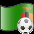 Soccer Zambia.png
