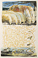 Songs of Innocence and of Experience, copy B, 1789, 1794 (British Museum) object 53 The Clod & the Pebble.jpg