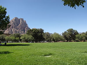 Spring Mountain Ranch State Park - A field in Spring Mountain Ranch State Park
