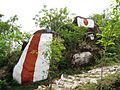 Sri Kariya Perumal , Kariya Perumal Karadu, Salem - panoramio (3).jpg