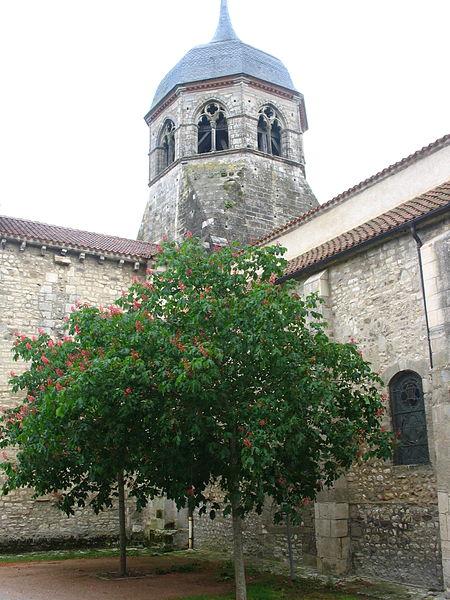Eglise Saint-Martin à Bellenaves (03).