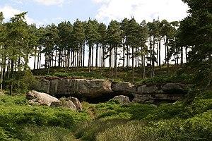 St Cuthbert's Cave - Cuddy's Cave. Holburn, near Lindisfarne