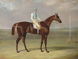 St. Giles (horse) British-bred Thoroughbred racehorse