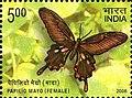 Stamp of India - 2008 - Colnect 157949 - Andaman Mormon Papilio mayo - Female.jpeg