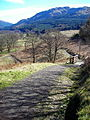 Steep Section on Callander to Strathyre Cycleway - geograph.org.uk - 394778.jpg