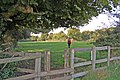 Stile, Damerham, Hampshire - geograph.org.uk - 985292.jpg