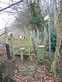 Stile and Steps on Wardwell Lane - geograph.org.uk - 1107686.jpg