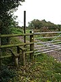 Stile into the National Forest - geograph.org.uk - 265911.jpg