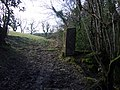Stone pillar near Gwal-y-filiast - geograph.org.uk - 1705027.jpg
