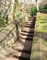 Stone wall and steps - geograph.org.uk - 734895.jpg