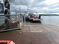 Strangford Ferry - geograph.org.uk - 456229.jpg