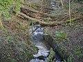 Stream at Auchentorlie - geograph.org.uk - 326586.jpg