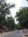 Street around Palani Temple 3.jpg