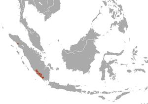 Sumatran striped rabbit - Image: Sumatran Striped Rabbit area