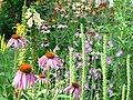 Summer garden (224592417).jpg