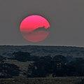 Sunset-kgalagadi (36776726876).jpg