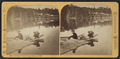 Sweeney's Carry, Upper Saranac Lake, by Styles, A. F. (Adin French), 1832-1910.png