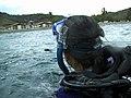 Swim Back to Shore.jpg