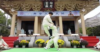 Taekkyeon Traditional Korean martial art