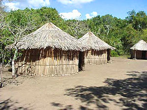 History of Puerto Rico - Taíno. Village at Macdonalds Tibes Indigenous Ceremonial Center in Ponce, Puerto Rico