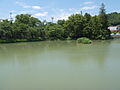 Take Tukimiga, Uenohara city, Yamanashi Prefecture.jpg