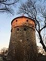 Tallinn - -i---i- (31652234883).jpg