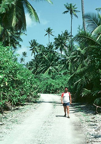 Diego Garcia - An unpaved road in Diego Garcia in the eastern restricted zone, home to the former plantations