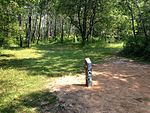 Tee and wooden post at Lochness Park disc golf course.JPG