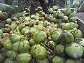 Tender coconut 2.jpg