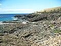 """Teneriffa - Süd - La Galletas - Küstenwanderung nach Westen zum Leuchtturm von Punta Rasca -""""Promenade an Bananenplantage öffentlich"""" - panoramio (1).jpg"""