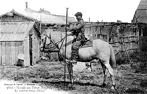 Camargue horse - A gardian in the early 20th century