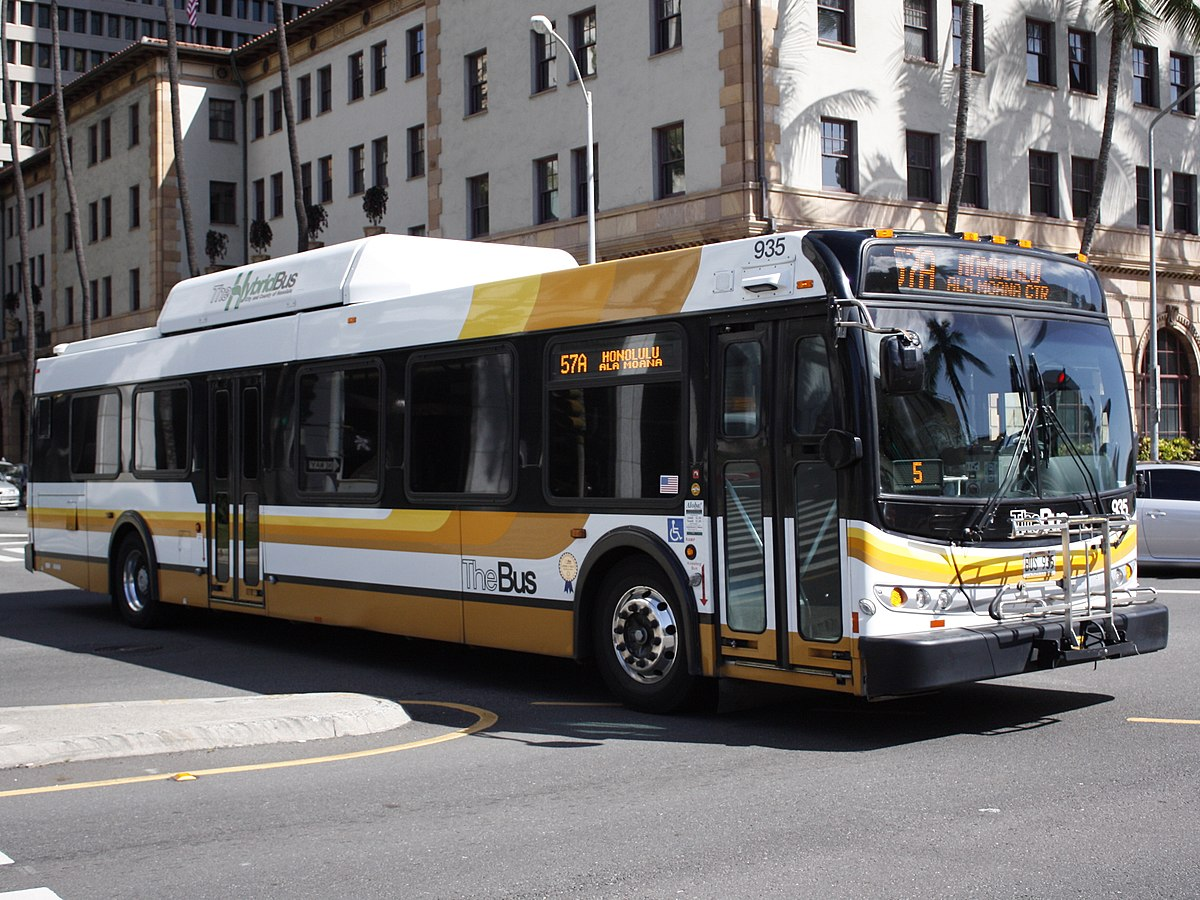the bus Tip: enter an intersection, bus route or bus stop code try these example searches: route: b63 m5 bx1 intersection: main st and kissena bl.