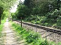 The Bure Valley Railway and walk - geograph.org.uk - 1272896.jpg