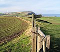 The Cleveland way footpath - geograph.org.uk - 662895.jpg