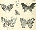 The Encyclopaedia Britannica; A dictionary of arts, sciences and general literature (1902) (14784031265).jpg
