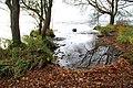 The Loughshore near Antrim (2) - geograph.org.uk - 611761.jpg