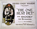 The One Best Pet 1920.jpg