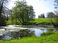 The Pond by Pond Farm - geograph.org.uk - 161793.jpg