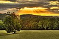 The Sun Melts Into The Dorset Countryside (20019630620).jpg