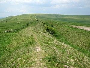 Wansdyke (earthwork) - The Wansdyke on Tan Hill, Wiltshire